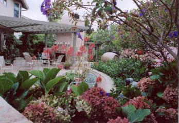 San Diego | Landscape Architect | Beautiful Regional Landscapes | Kay  Stewart